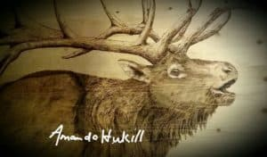 , Artist Interview: Amanda Hukill, Gold Leaf Gallery